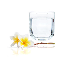 drinking water and frangipani flower on white background