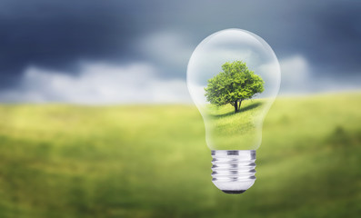 Tree in electric lamp. Ecological energy concept.