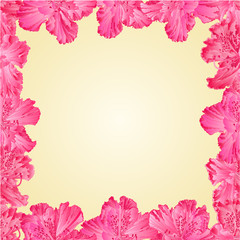 Seamless texture frame of rhododendron vector