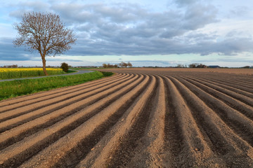 plowed field on farmland