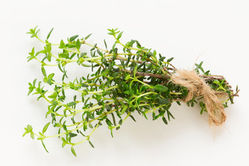Fresh green thyme branch close up