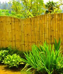 Bamboo decoration