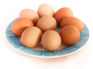 Dish with eggs on white background