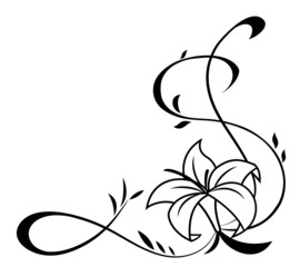 Lily flowers black silhouette illustration