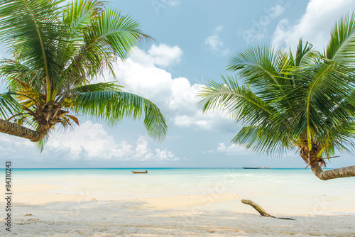 Wall mural Coconut palm tree at the beautiful beach