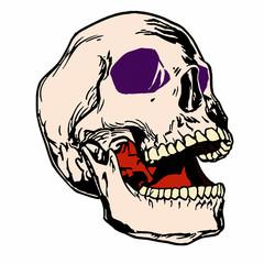 Эскиз татуировки череп