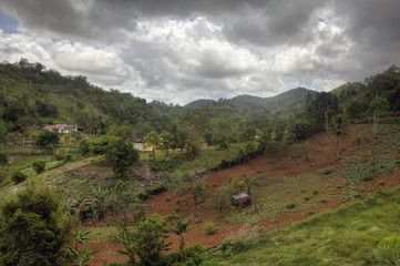 Jamaica Rural Inland