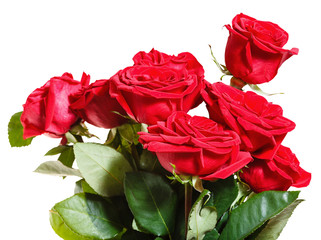 side view of bouquet of red roses isolated