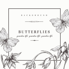 Background with flowers and butterflies.