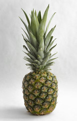 Green pineapple on a white background