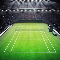 grass tennis court and stadium full of spectators