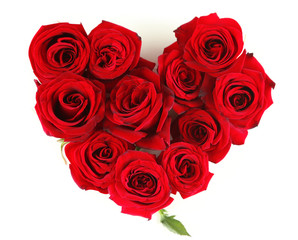 Beautiful red roses, isolated on white