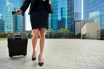 international businesswoman traveller