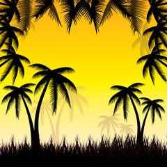 Summer background whit palm trees.