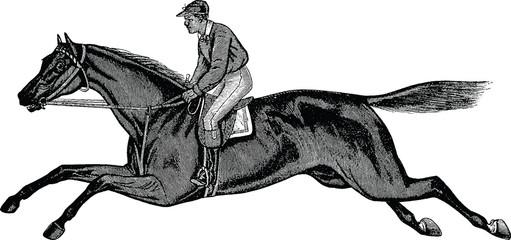 Vintage picture horse race