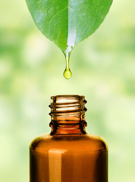 Organic bio alternative medicine.Essemtial oil.Skin care.