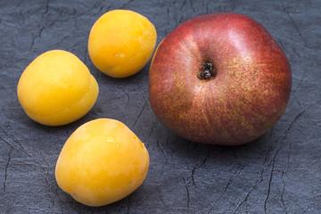 Груша и три абрикоса крупным планом на синем фоне