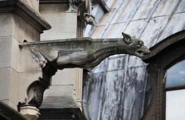 Gargoyle in Saint Germain l'Auxerrois church. Paris, France