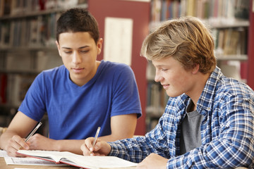 2 Students working together in library