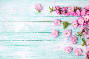 Postcard  with fresh  pink flowers