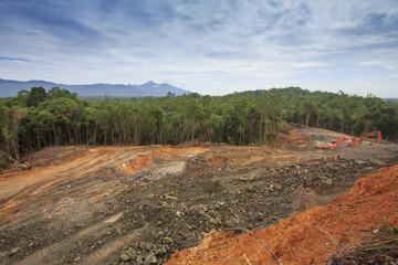 Deforestation logging environmental problem in Borneo, Malaysia