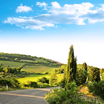 day of summer in Chianti