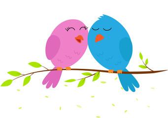 Love bird on a branch