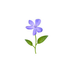 Beautiful watercolor blue flower with leaves