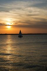 Sailboat on the Chesapeake at sunset