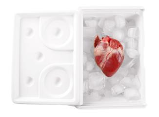 Heart organ in fridge isolated on white
