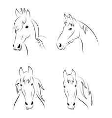 Set symbols outline head horse isolated on white background