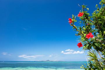 沖縄の海・ハイビスカスと伊江島