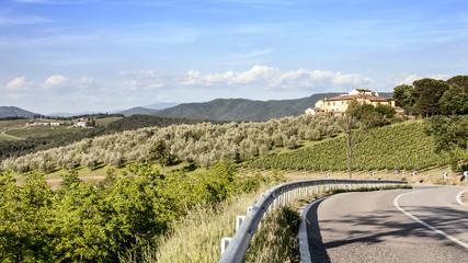 Vigneti e uliveti nelle colline toscane in primavera