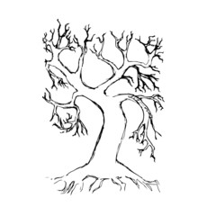 Hand drawn tree  isolated vector illustration
