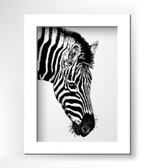 artwork head profile zebra, digital sketch of animal