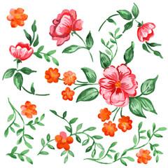 Handpainted watercolor vector flowers and leaves set
