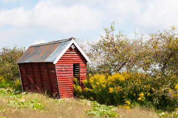 old crooked red shed in a field