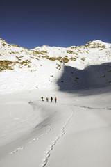 Alpine skiers