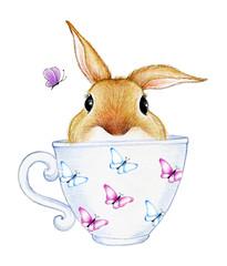 Cute bunny in a mug