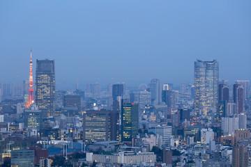 東京都市風景 新宿高層ビル街から望む東京タワーと東京都心全景 望遠