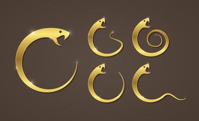 Vector illustration of golden snake, app icon, business logo