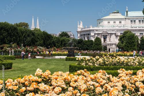 Volksgarten Wien In Der Rosenblüte Stock Photo And Royalty Free