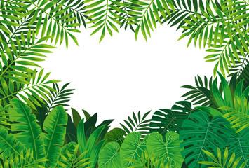 熱帯雨林 Wall mural