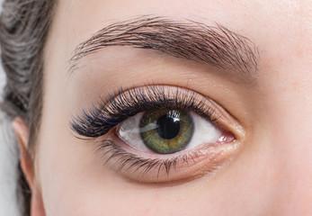 lash eyes