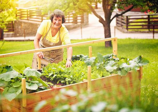 elderly woman with vegetables in her garden-gardening 01