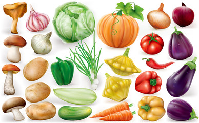 Set of vegetable