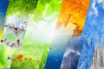 Four seasons of year Fotoväggar