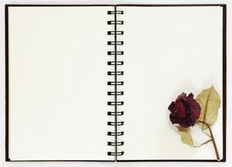 notebook with dried rose