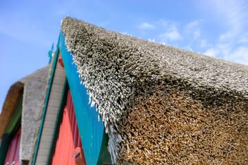 Dach aus Schilfrohr