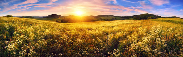 Fotoväggar - Panorama of a colorful sunset on beautiful meadow